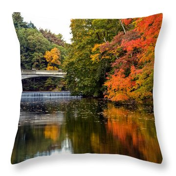 Fall Colors In New York State Throw Pillow by Don Mennig