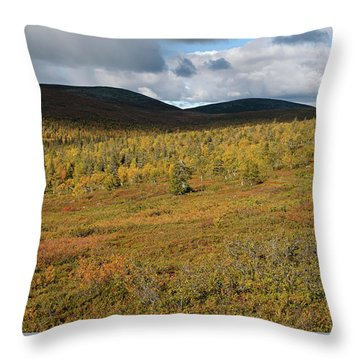 Fall Colors In Tundra Throw Pillow