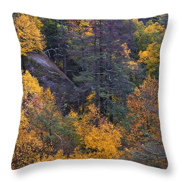 Throw Pillow featuring the photograph Fall Colors by Ken Barrett