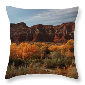 Fall Colors Near Zion Throw Pillow