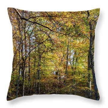 Throw Pillow featuring the photograph Fall Colors Of Rock Creek Park by Ed Clark