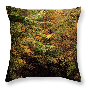 Throw Pillow featuring the photograph Fall Colors On The Trail by Shelby Young