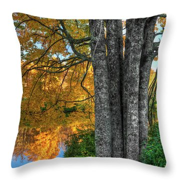 Throw Pillow featuring the photograph Fall Colors Reflecting In A Blue Ridge Lake by Dan Carmichael
