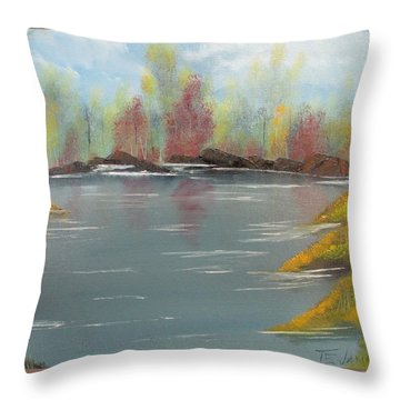 Fall Colors Throw Pillow by Thomas Janos