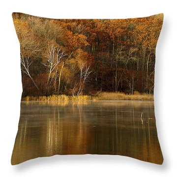 Fall Cove Throw Pillow