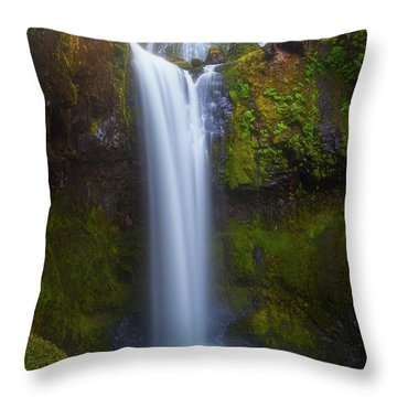 Fall Creek Falls Throw Pillow by Darren White