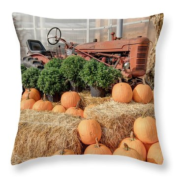 Fall Display Throw Pillow
