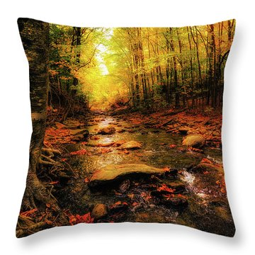 Fall Dreams Throw Pillow