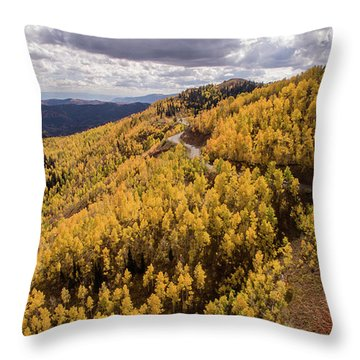 Fall Drive Throw Pillow