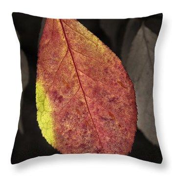 Fall Elder Leaf Throw Pillow