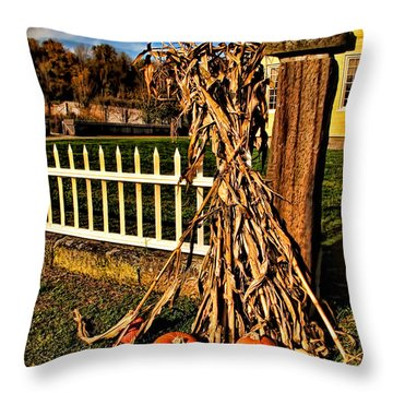 Fall Fence At Hale Farm Throw Pillow by Joan  Minchak