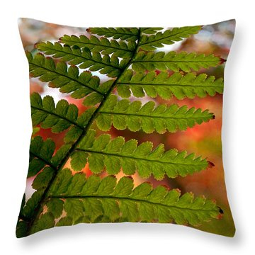 Throw Pillow featuring the photograph Fall Fern by Gwyn Newcombe