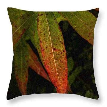 Fall Fireweed 1 Throw Pillow