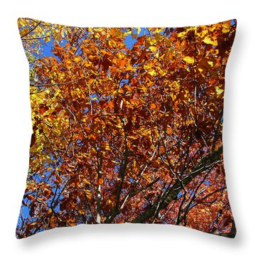 Fall Throw Pillow by Flavia Westerwelle