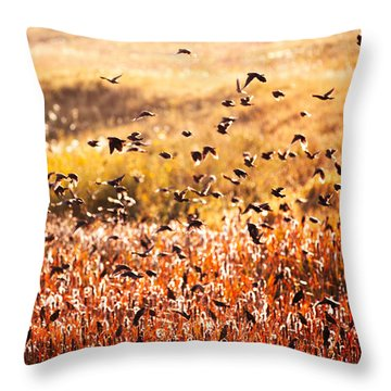 Formation Flying Throw Pillows