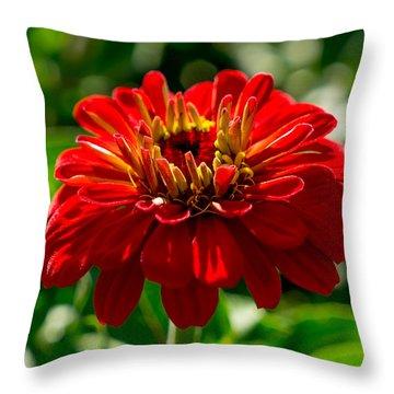 Fall Flower Throw Pillow