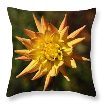 Throw Pillow featuring the photograph Fall Flower by Richard Bryce and Family
