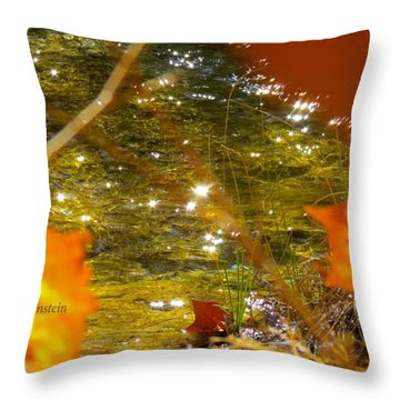 Fall Flyer Throw Pillow