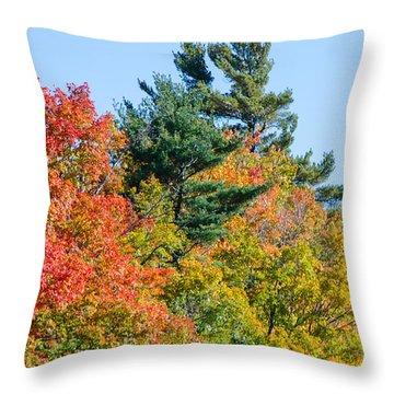 Fall Foliage 3 Throw Pillow
