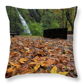 Fall Foliage At Horsetail Falls Throw Pillow by David Gn