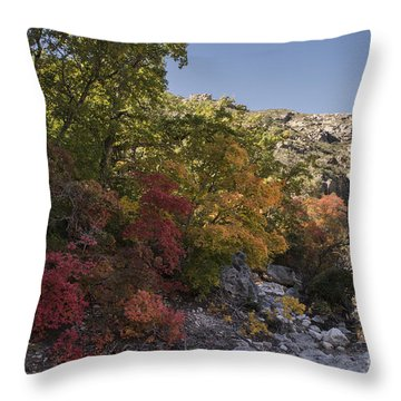 Throw Pillow featuring the photograph Fall Foliage In The Guadalupes by Melany Sarafis