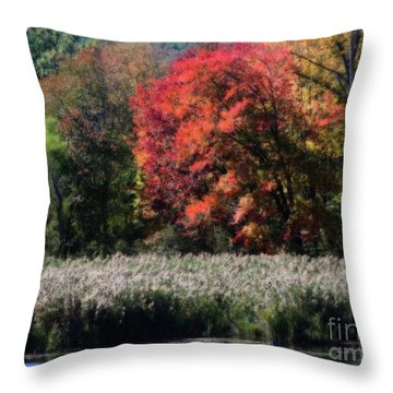 Throw Pillow featuring the photograph Fall Foliage Marsh by Smilin Eyes  Treasures
