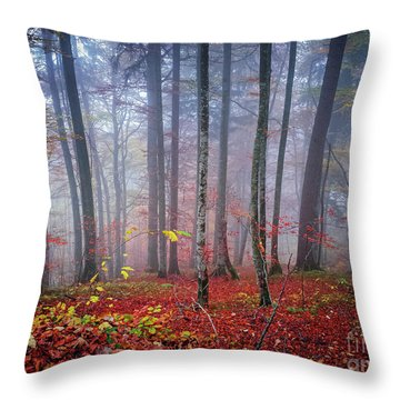 Throw Pillow featuring the photograph Fall Forest In Fog by Elena Elisseeva