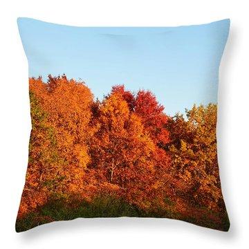 Fall Forest Throw Pillow by Nikki McInnes