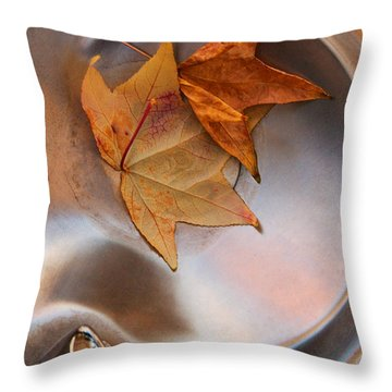 Fall Fountain Throw Pillow