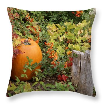 Throw Pillow featuring the photograph Fall Garden by Cynthia Powell
