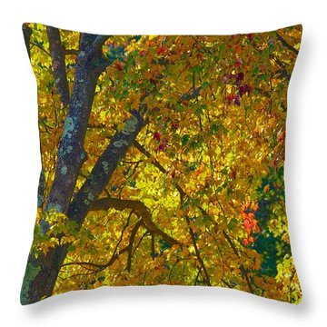 Fall Glory On Route 53 Throw Pillow