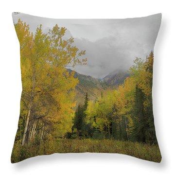 Fall Glow Throw Pillow