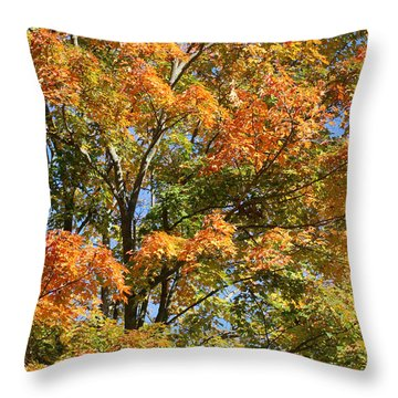 Throw Pillow featuring the photograph Fall Gradient by William Selander