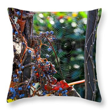 Fall Grapes With Spider Web Throw Pillow