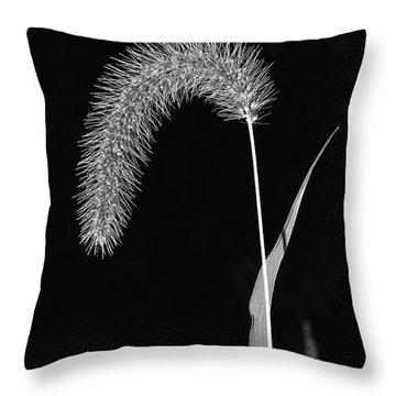 Fall Grass 1 Throw Pillow