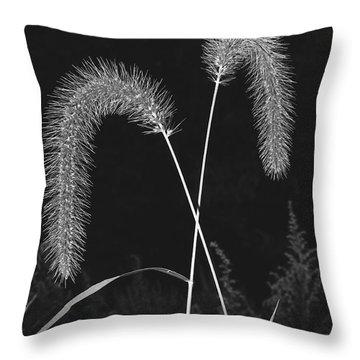Fall Grass 2 Throw Pillow