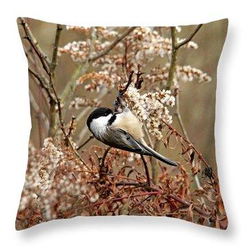 Fall Harvest Chickadee Throw Pillow