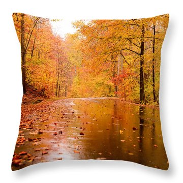 Fall Holidays Throw Pillow