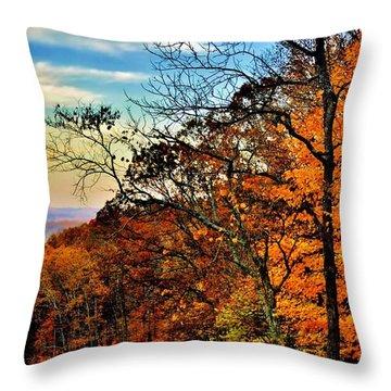 Fall Horizon Throw Pillow