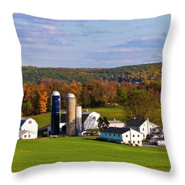 Fall In Amish Country Throw Pillow