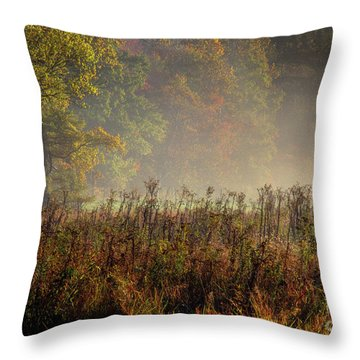 Throw Pillow featuring the photograph Fall In Cades Cove by Douglas Stucky