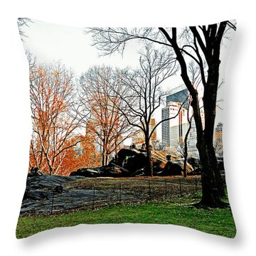 Fall In Central Park Throw Pillow