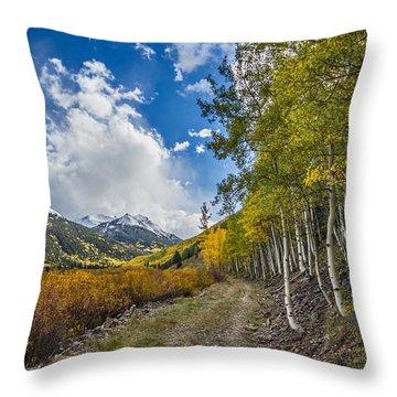 Fall In Colorado Throw Pillow