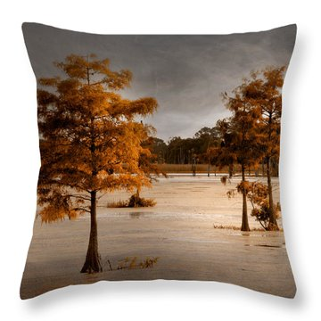 Fall In Florida Throw Pillow by Carolyn Dalessandro