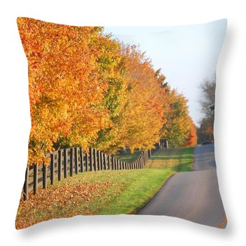 Fall In Horse Farm Country Throw Pillow