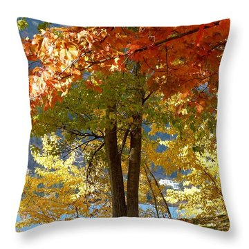 Fall In Kaloya Park 4 Throw Pillow