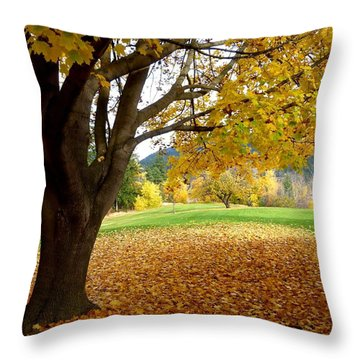 Fall In Kaloya Park 8 Throw Pillow