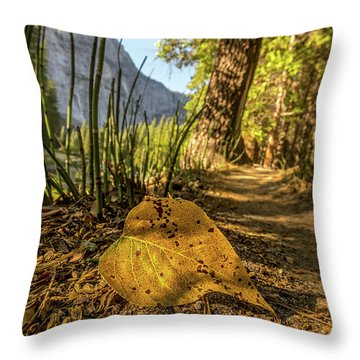 Fall In Leaf Throw Pillow by Peter Tellone