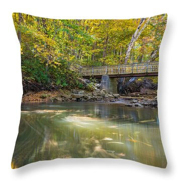 Fall In Motion Throw Pillow