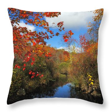 Fall In New England 2 Throw Pillow
